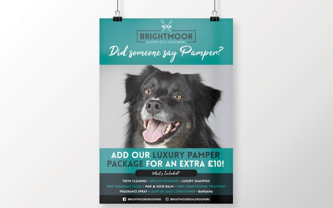 Brightmoor Luxury Dog Grooming | A3 Poster