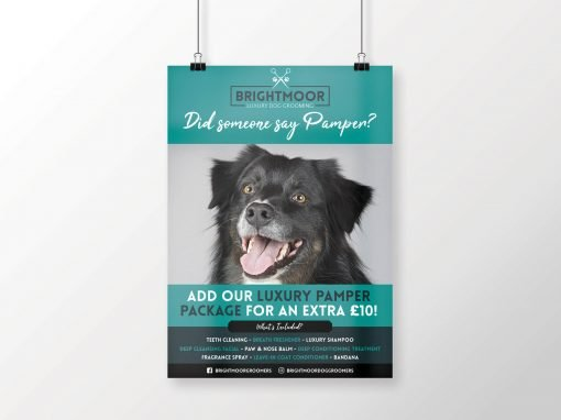 Brightmoor Luxury Dog Grooming | A3 Poster