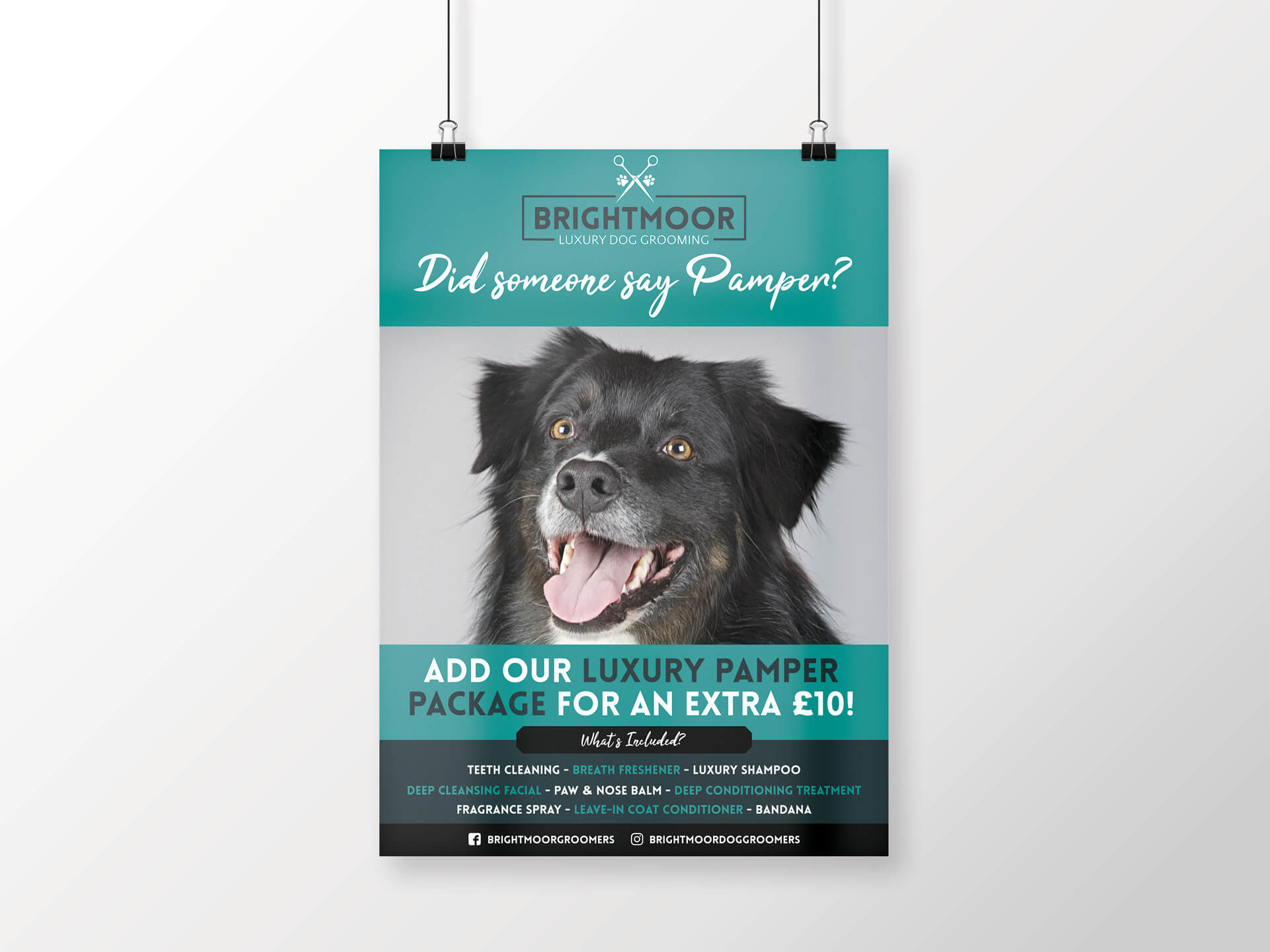 Brightmoor Luxury Dog Grooming A3 Poster