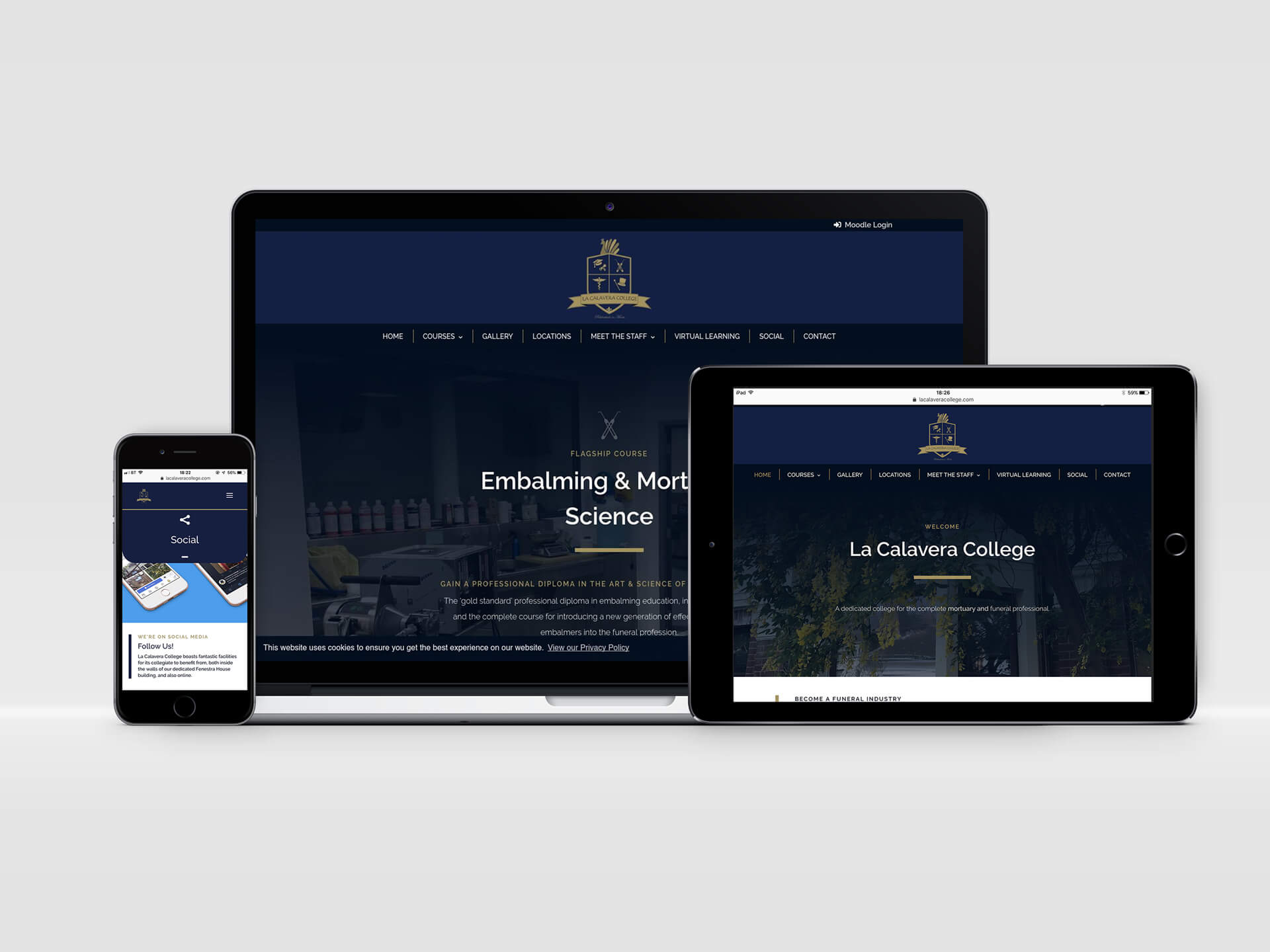 La Calavera College Website Design