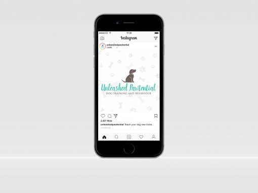 Unleashed Pawtential | Social Media Marketing